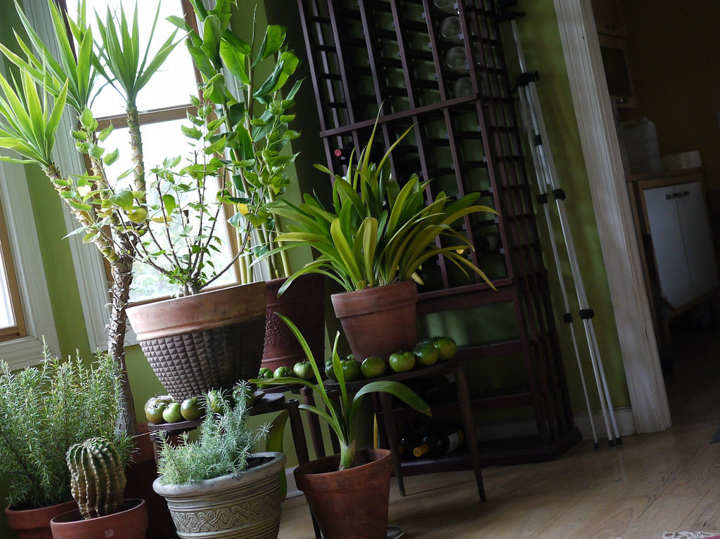 indoor air quality testing manassas